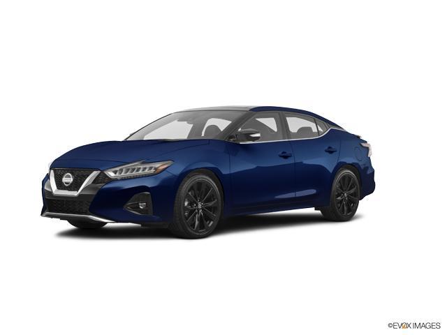 2019 Nissan Maxima Vehicle Photo in Odessa, TX 79762