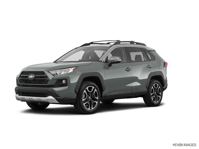 2019 Toyota RAV4 Vehicle Photo in San Antonio, TX 78257