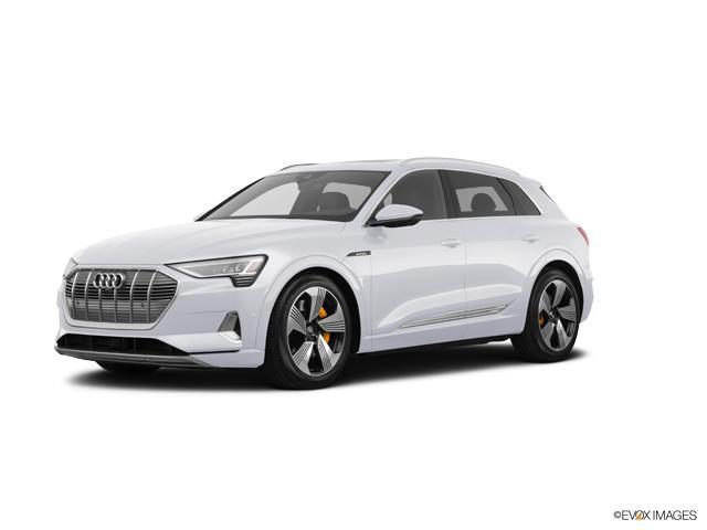 2019 Audi e-tron Vehicle Photo in Sugar Land, TX 77478