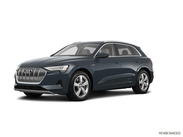 2019 Audi e-tron Vehicle Photo in Houston, TX 77090