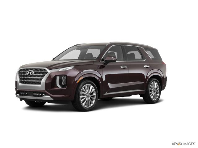 2020 Hyundai Palisade Vehicle Photo in Merrilville, IN 46410
