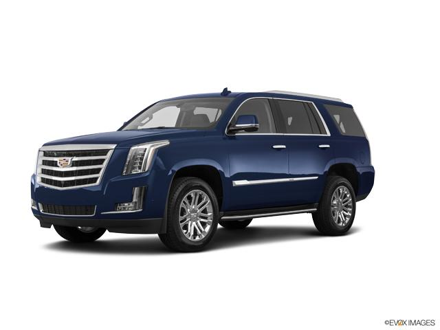 2020 Cadillac Escalade Vehicle Photo in Norfolk, VA 23502