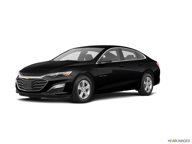 2020 Chevrolet Malibu Vehicle Photo in Chelsea, MI 48118