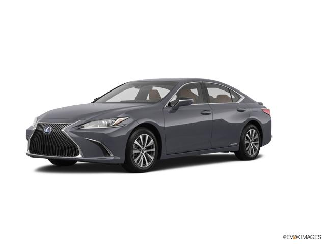 2020 Lexus ES Vehicle Photo in Appleton, WI 54913