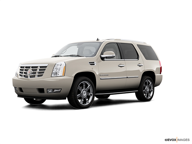 2007 Cadillac Escalade Vehicle Photo in Columbia, TN 38401