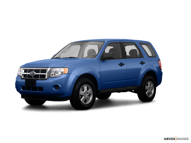 2009 Ford Escape Vehicle Photo in Glenwood, MN 56334