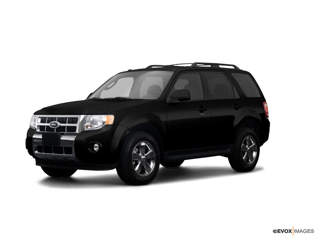 2009 Ford Escape Vehicle Photo in Moon Township, PA 15108