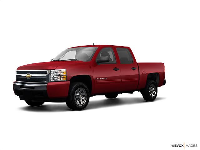 2009 Chevrolet Silverado 1500 Vehicle Photo in Selma, TX 78154