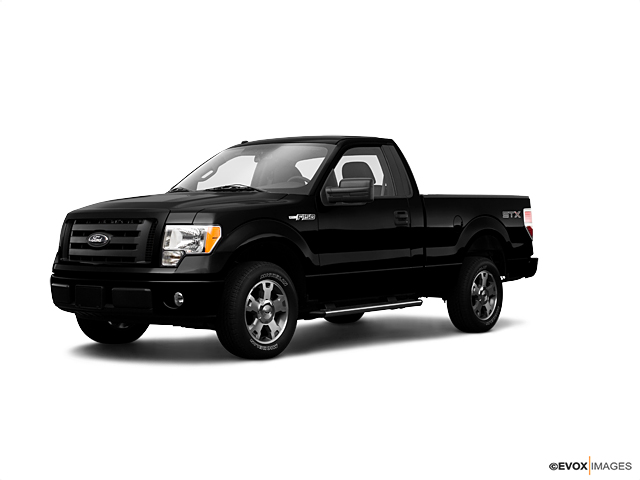 2009 Ford F-150 Vehicle Photo in Houston, TX 77054