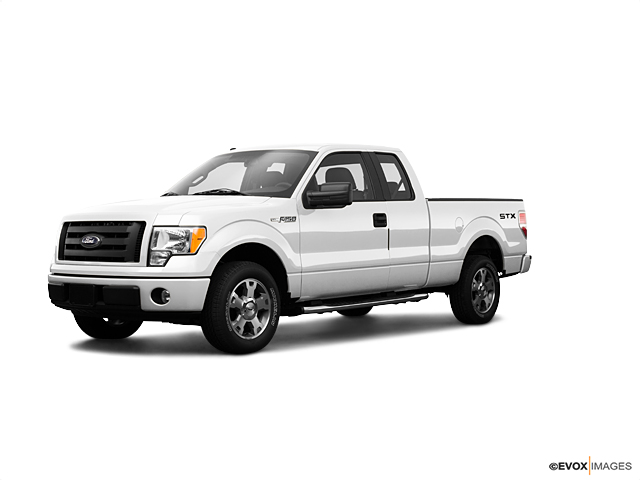 2009 Ford F-150 Vehicle Photo in Richmond, VA 23231