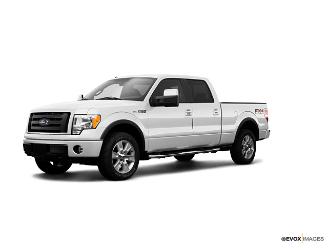 2009 Ford F-150 Vehicle Photo in Allentown, PA 18103