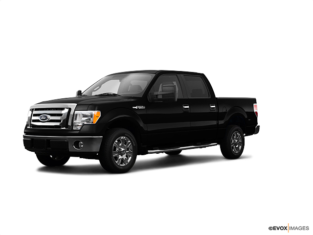 2009 Ford F-150 Vehicle Photo in Rockville, MD 20852