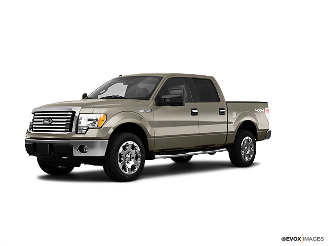 2010 Ford F-150 Vehicle Photo in San Antonio, TX 78254