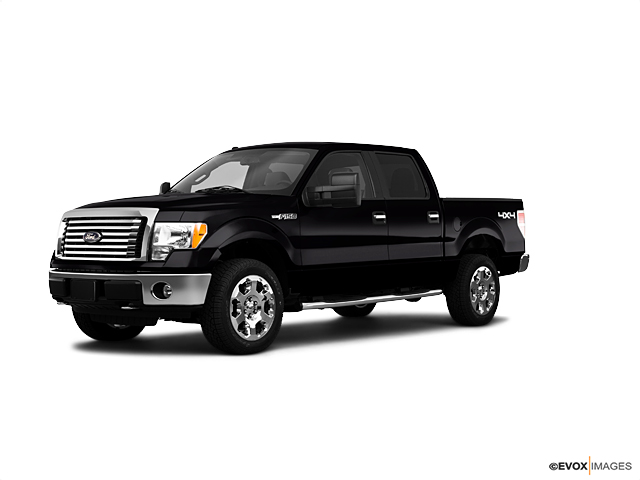2010 Ford F-150 Vehicle Photo in Mansfield, OH 44906