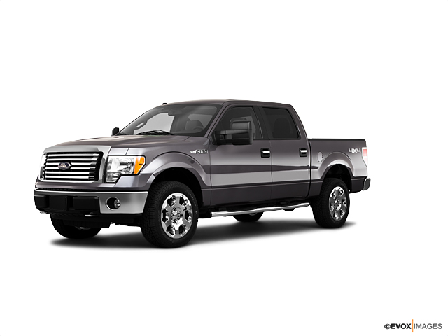 2010 Ford F-150 Vehicle Photo in Houston, TX 77034
