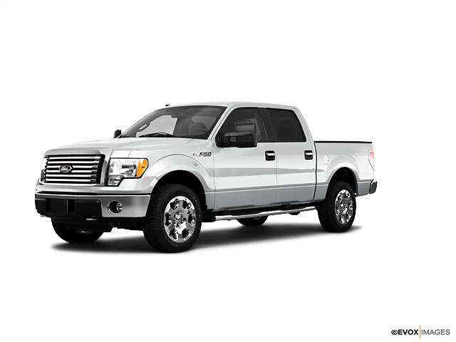 2010 Ford F-150 Vehicle Photo in Owensboro, KY 42302