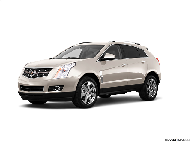 2010 Cadillac SRX Vehicle Photo in Fort Worth, TX 76116