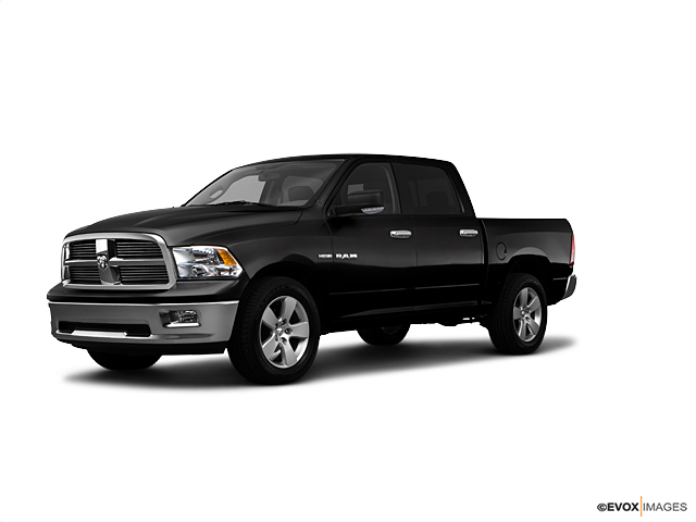 2010 Dodge Ram 1500 Vehicle Photo in Boonville, IN 47601