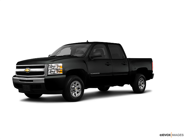 2010 Chevrolet Silverado 1500 Vehicle Photo in Lafayette, LA 70503