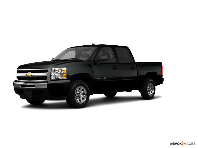 2010 Chevrolet Silverado 1500 Vehicle Photo in Medina, OH 44256