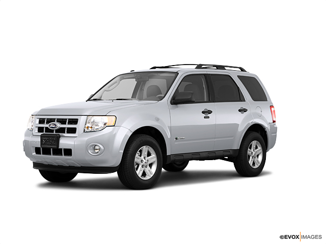 2010 Ford Escape Vehicle Photo in Greenville, NC 27834