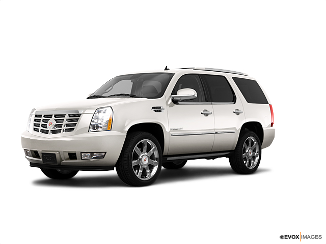 2010 Cadillac Escalade Vehicle Photo in Shreveport, LA 71105