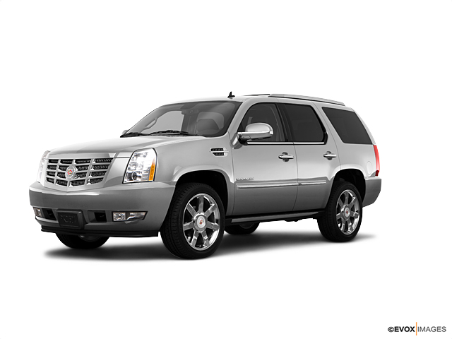 2010 Cadillac Escalade Vehicle Photo in Quakertown, PA 18951