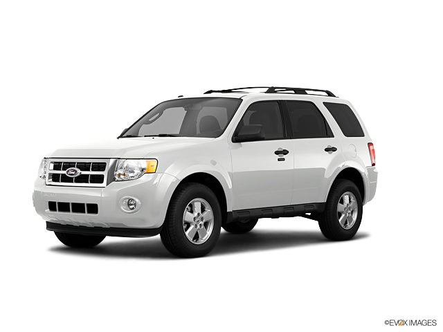 2011 Ford Escape Vehicle Photo in Medina, OH 44256