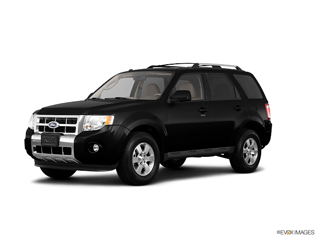 2011 Ford Escape Vehicle Photo in Rockville, MD 20852