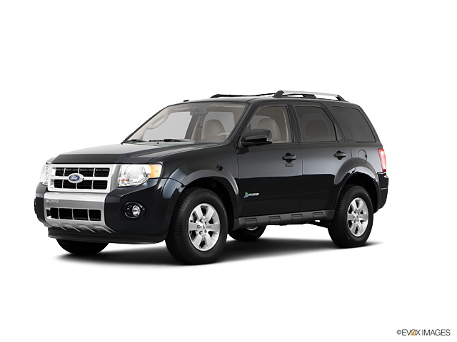 2011 Ford Escape Vehicle Photo in Denver, CO 80123