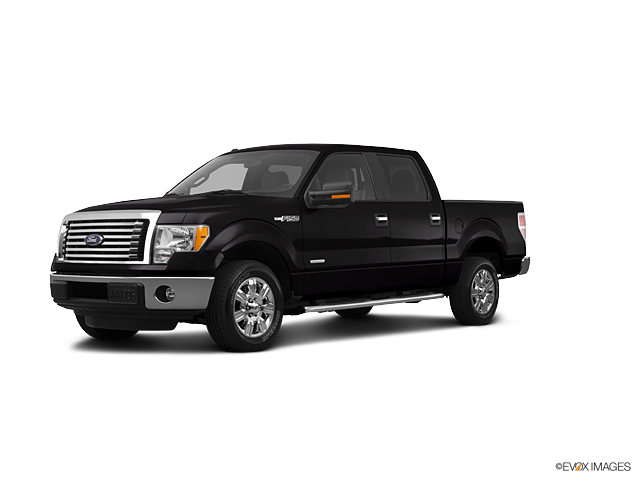 2012 Ford F-150 Vehicle Photo in Owensboro, KY 42303