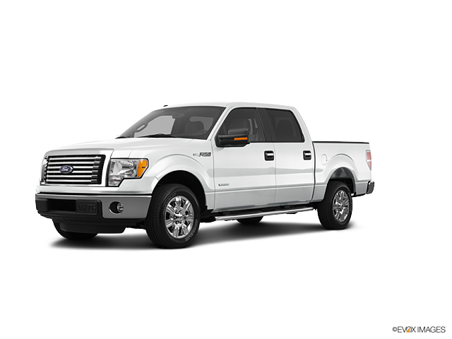 2012 Ford F-150 Vehicle Photo in Rockwall, TX 75087