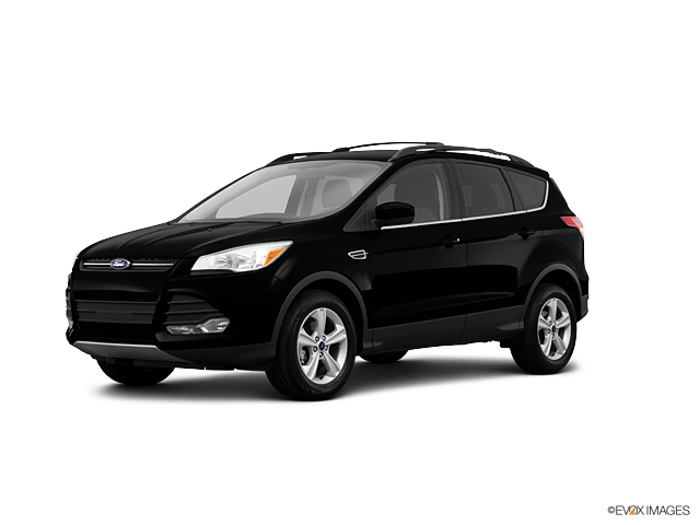 2013 Ford Escape Vehicle Photo in Independence, MO 64055