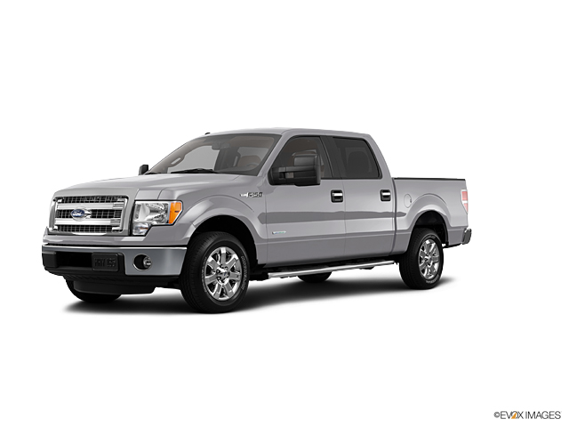 2013 Ford F-150 Vehicle Photo in Beaufort, SC 29906