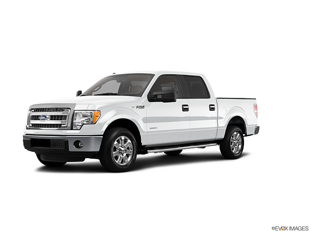 2013 Ford F-150 Vehicle Photo in Darlington, SC 29532