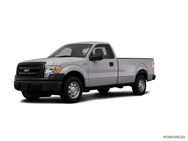 2013 Ford F-150 Vehicle Photo in Newark, DE 19711