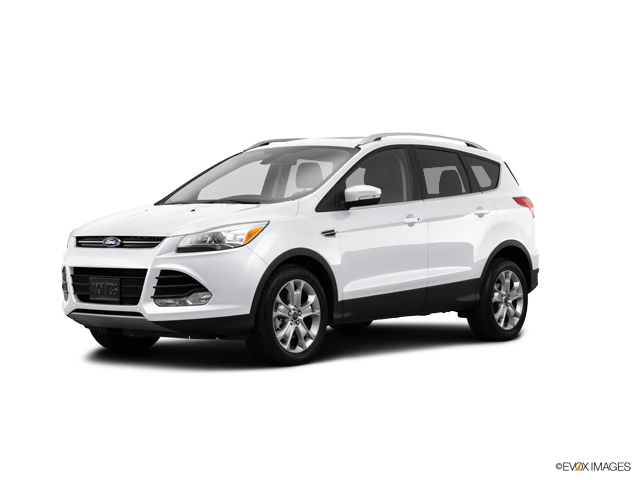 2014 Ford Escape Vehicle Photo in Lincoln, NE 68521