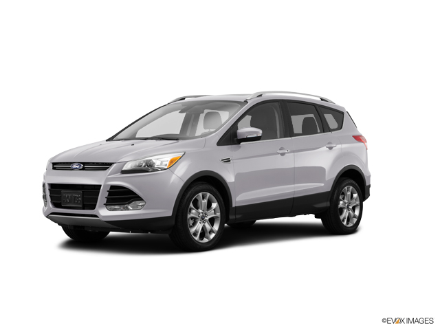 2014 Ford Escape Vehicle Photo in Colorado Springs, CO 80920