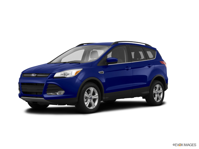 2014 Ford Escape Vehicle Photo in Akron, OH 44303