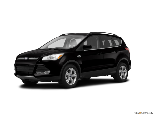 2014 Ford Escape Vehicle Photo in Joliet, IL 60435