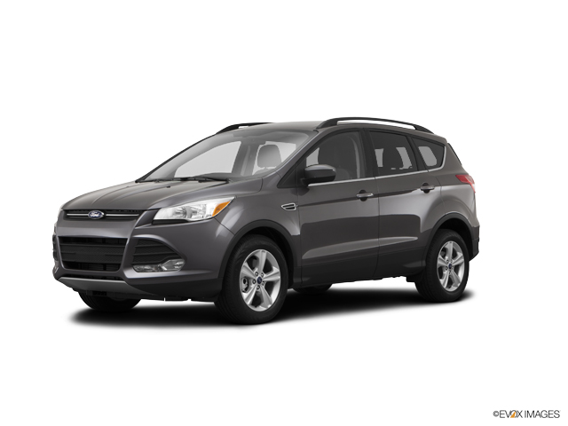 2014 Ford Escape Vehicle Photo in Sugar Land, TX 77479