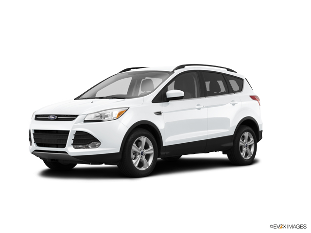2014 Ford Escape Vehicle Photo in Bloomington, IN 47403