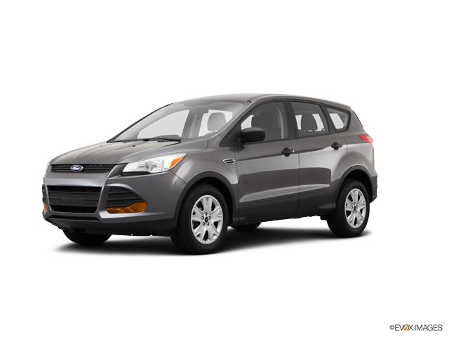 2014 Ford Escape Vehicle Photo in Rockford, IL 61107