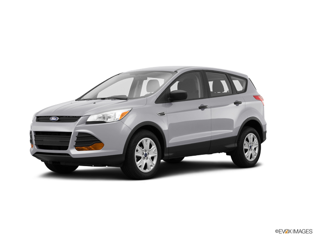 2014 Ford Escape Vehicle Photo in Milford, OH 45150