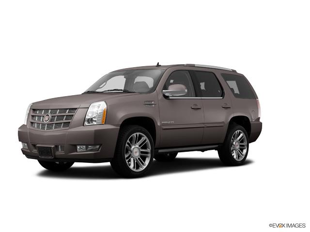 2014 Cadillac Escalade Vehicle Photo in San Antonio, TX 78230
