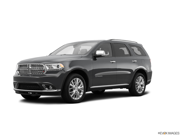 2014 Dodge Durango Vehicle Photo in Chelsea, MI 48118
