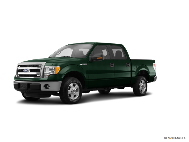 2014 Ford F-150 Vehicle Photo in Hudsonville, MI 49426