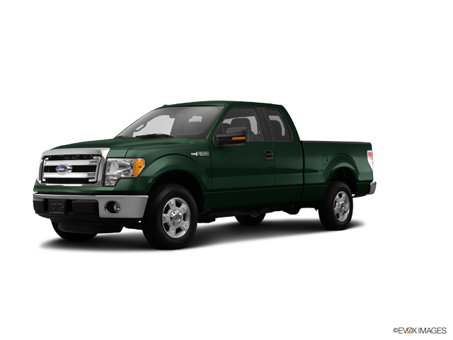 2014 Ford F-150 Vehicle Photo in Franklin, TN 37067
