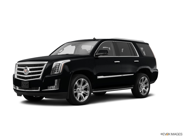 2015 Cadillac Escalade Vehicle Photo in Butler, PA 16002